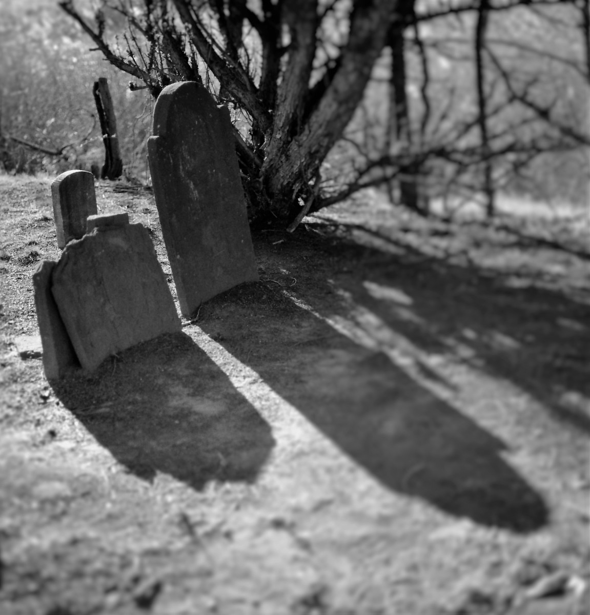 HEADSTONE SHADOWS