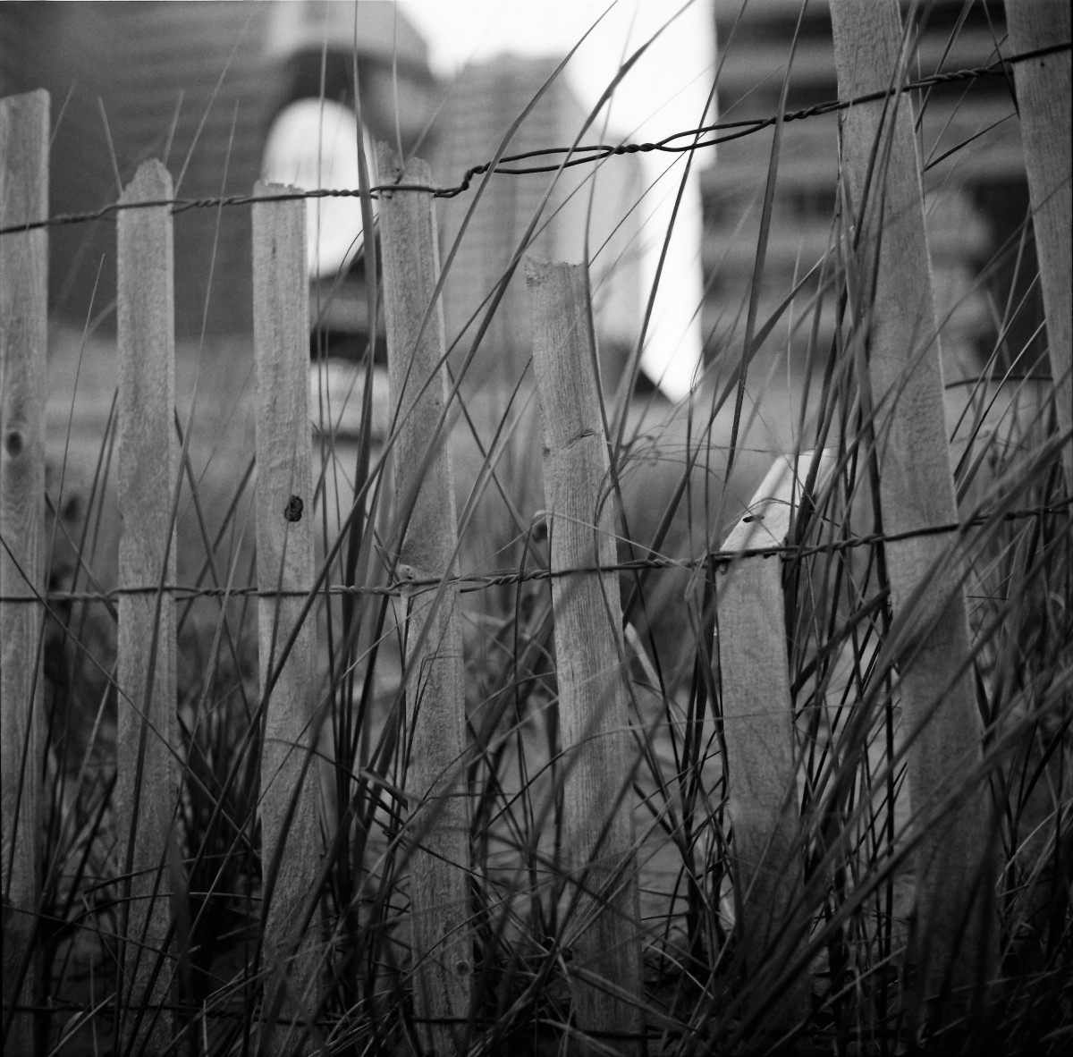 fence in ac