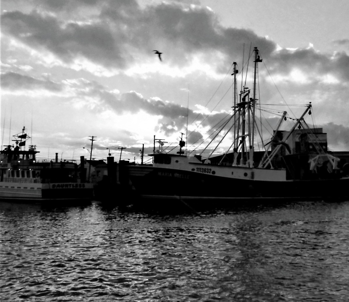 Carmine taverna photographs america telling stories for Point pleasant fishing boats